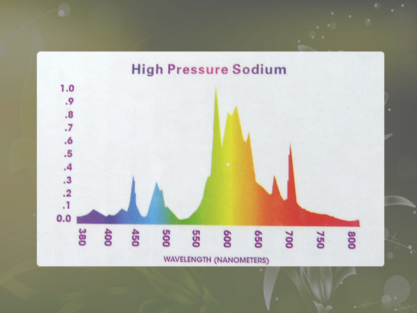 hps lamp trilite hydroponics high pressure sodium grow light ebay. Black Bedroom Furniture Sets. Home Design Ideas